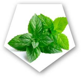 Detoxyn Pepper mint